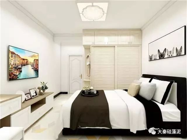 大秦硅藻泥图片 简欧风格三居室效果图
