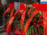 热烈祝贺广东惠州大亚湾泥师傅硅藻泥店盛大开业